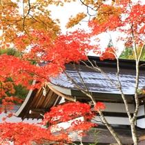 秋の外観4