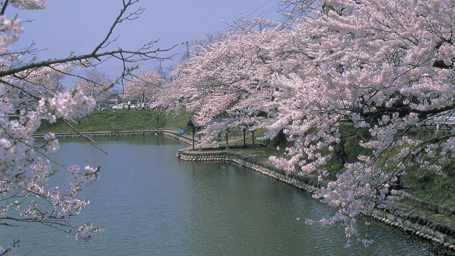 鶴ヶ城址公園