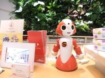 ソビアル ロボット ナミ