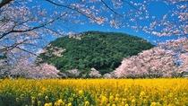 *【周辺観光】丸山公園