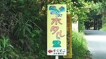 *【周辺観光】百次ホタルの里:幻想的な蛍の舞が!九州新幹線の線路も近く、蛍と新幹線とのコラボも期待!