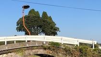 *【周辺観光】太鼓橋:ナニコレ珍百景で紹介されたうつむくカーブミラー。