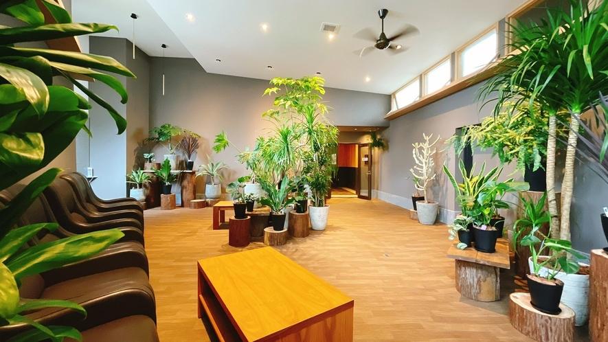 本館と宙館を繋ぐ、エレベーターホール(自販機有り) 観葉植物に囲まれた癒しの空間