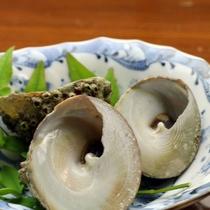 【シッタカ】歯ごたえがコリコリ美味しい貝です。