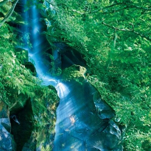 この地で古くから親しまれてきた「呉坊の滝」