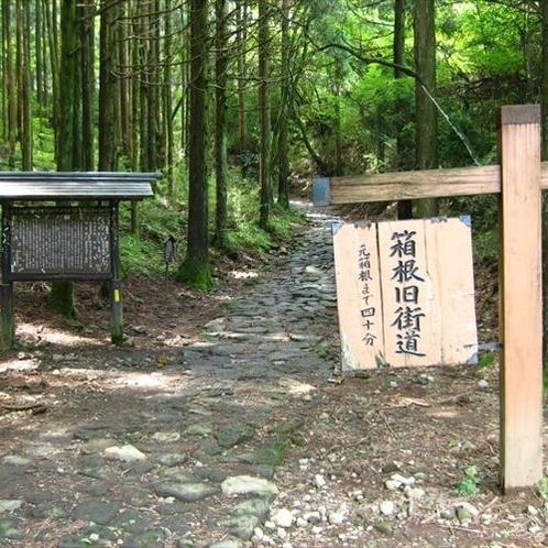 箱根旧街道石畳を散策