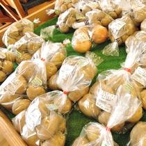 *野菜直売所/地元農家の方から仕入れる農産物を驚きの安さで販売しております!