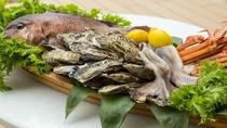 地元の漁港から新鮮な魚介類を厳選仕入れ
