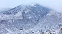 【離れ】冬の眺望