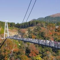 【周辺観光】九重夢大吊橋