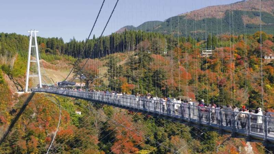 【九重夢大吊橋】長さ390m、高さ173m、幅1.5mのこの橋は、歩道専用として『日本一の高さ』を誇