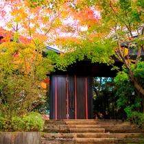 外観|紅葉色ずく、秋の隠れ家