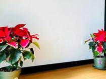 【館内】フロントの下にはお花を設置しています