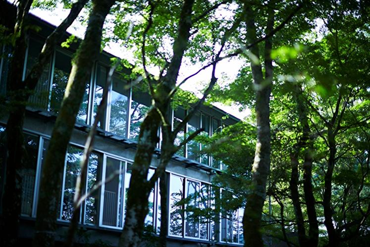 スーペリア【ハリウッドツイン】27平米 宿泊棟外観:手つかずの自然が残る富士箱根伊豆国立公園内