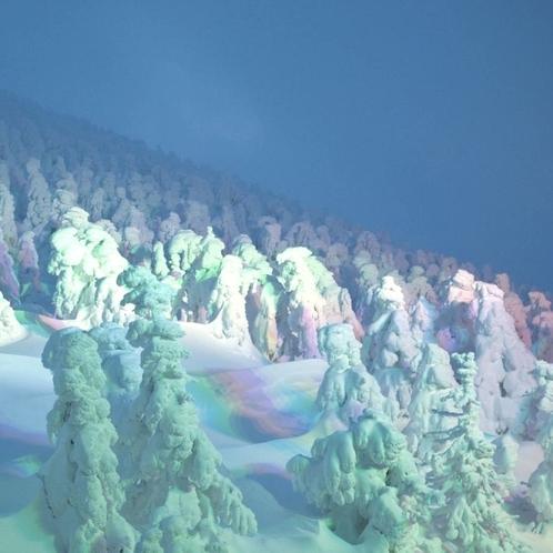 冬の山形!蔵王の樹氷