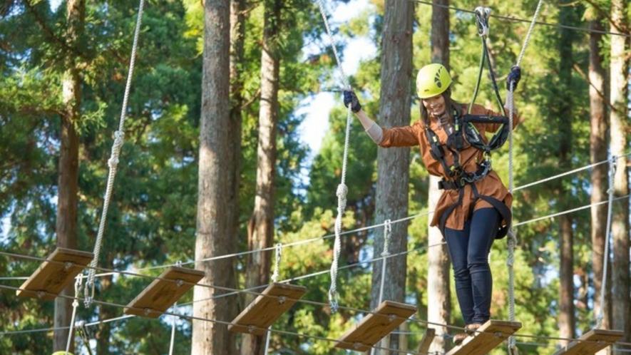 ツリーピクニックアドベンチャーいけだ 樹上のジャングルジムや全長1㎞のジップラインが楽しめます。