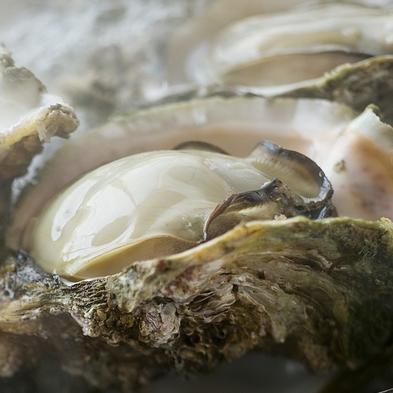夏の三大美味会席『白いかの姿造り』『海のミルク・岩牡蠣の蒸し焼き』『但馬牛ステーキ』が味わえるプラン