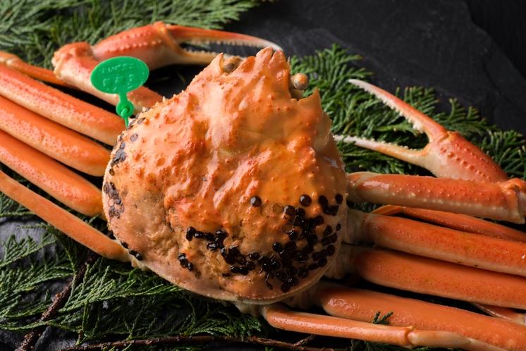 幻と呼ばれる<間人(たいざ)蟹>