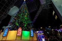 京都駅 クリスマスツリー