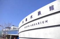 【当館より徒歩23分】京都水族館
