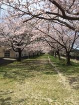 船明ダム 横 運動公園