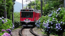 【周辺観光】登山鉄道とあじさい