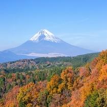 【11月頃】箱根ロープウェイから望む紅葉と富士山