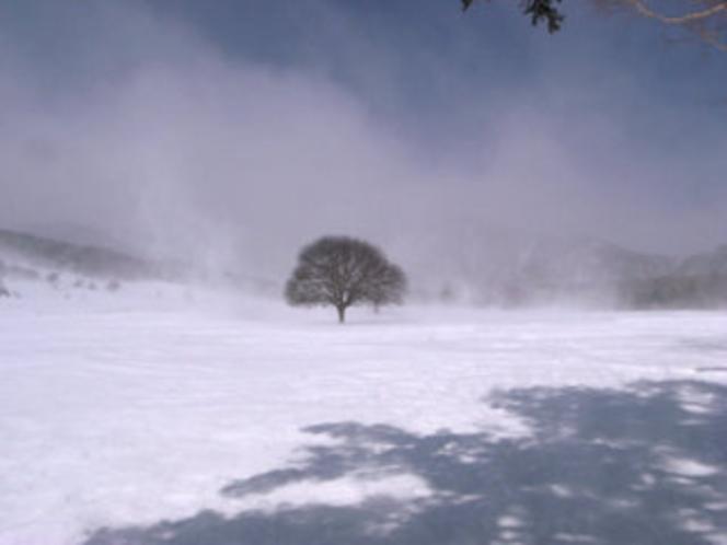 冬:ブリザード