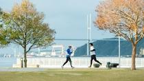 朝のジョギングに最適な『長崎水辺の森公園』