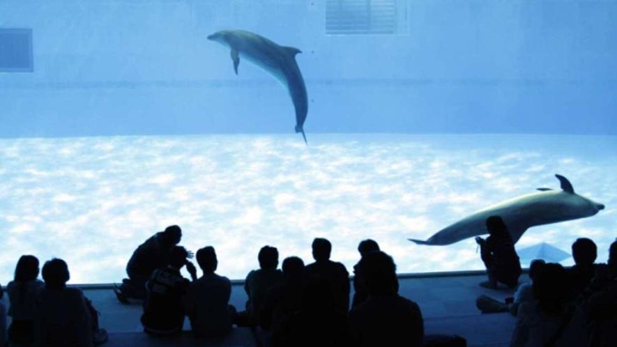 名古屋港水族館まで車で約25分、地下鉄名港線「名古屋港駅」下車徒歩約5分