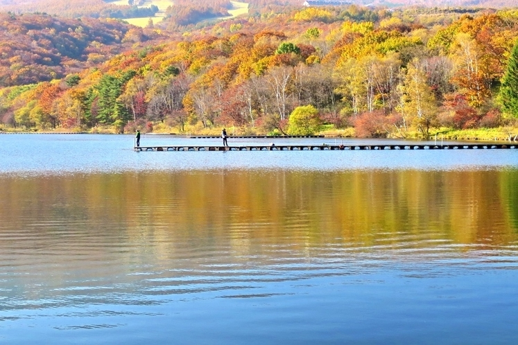 バラギ湖の紅葉(あいさいから車で3分)