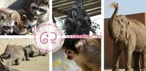 神峰動物園2