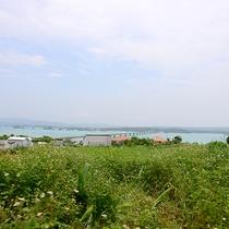 *古宇利島