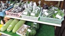 *館内売店/新鮮で格安の産直野菜はお土産に人気♪