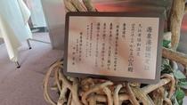 *当荘は「源泉湯宿を守る会」に加盟しています。