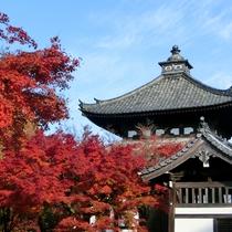 京都屈指の紅葉東福寺