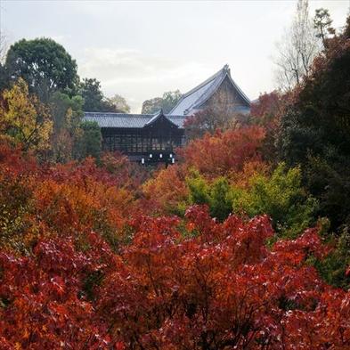 【京都随一の紅葉スポットを満喫♪】東福寺ライトアップ夜間拝観券付!<朝食付>