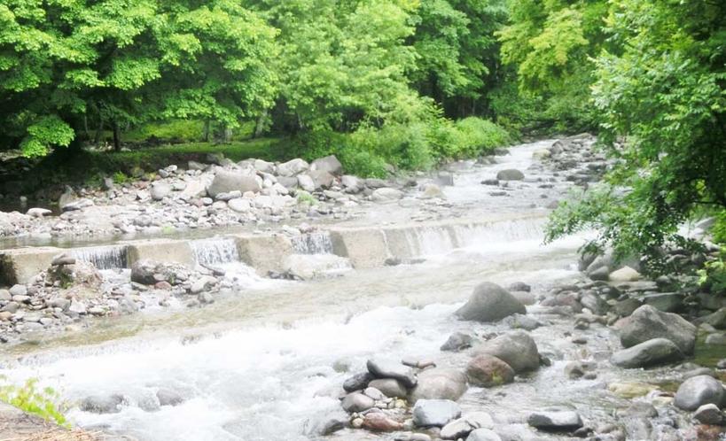 周辺 あおき河川