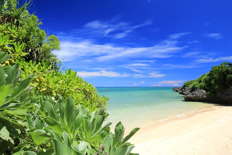 隠れ家ビーチ ~ ホントきれいな海だね~。君には負けるよ~。きゃ~~♪ ~