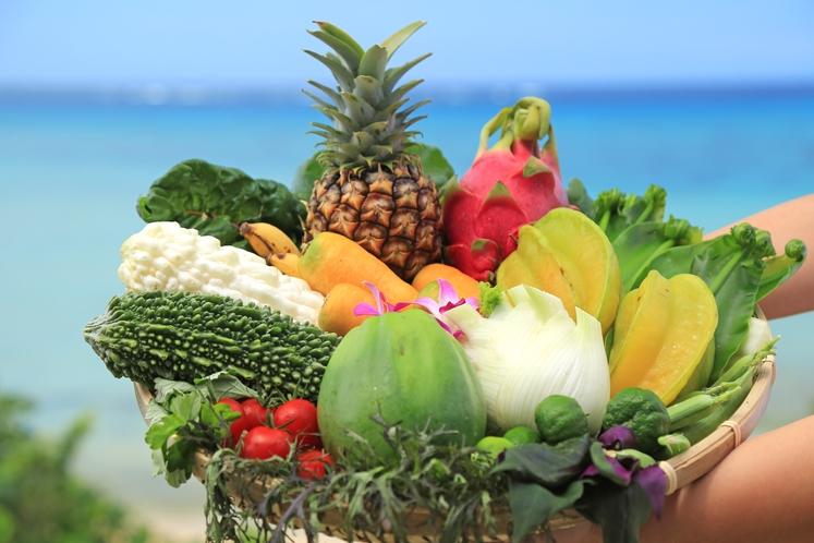 石垣島の旬の食材 ~旬と地へのこだわり  石垣島を五感で味わう幸福感を ~