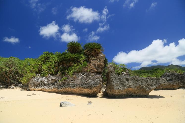 隠れ家ビーチ ~ 大人が冒険できる海、そして大自然がここにあります ~