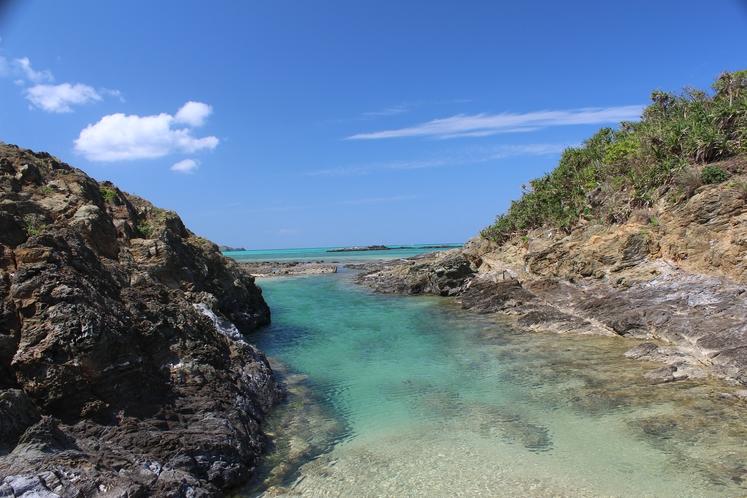 ホテル周辺の隠れ名所 ~ 南の島の楽園プール ~
