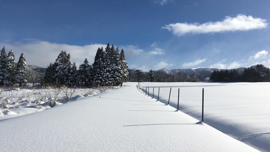 *一面真っ白な雪景色。