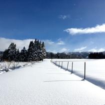 一面真っ白な雪景色。