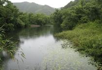 ■北川湿原■