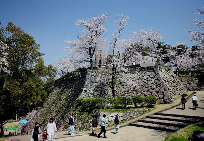 ■城山の石垣と桜■