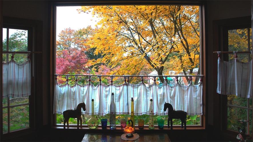 レストランの窓越しの紅葉