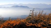 富士山五合目の奥庭