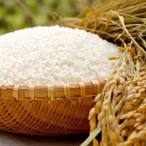 〈花万の4つのこだわり〉④北海道産ななつぼし米
