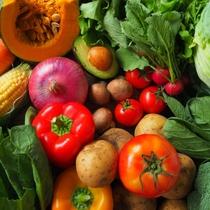 〈花万の4つのこだわり〉③糸島産直送の新鮮野菜